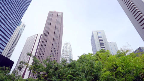 Image of trees vivid Japanese business district Live Action