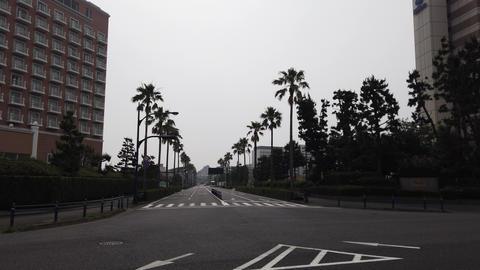 Maihama013 ライブ動画