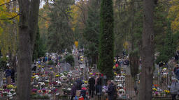 All Saints' Day in Poland. People are visiting graves Footage