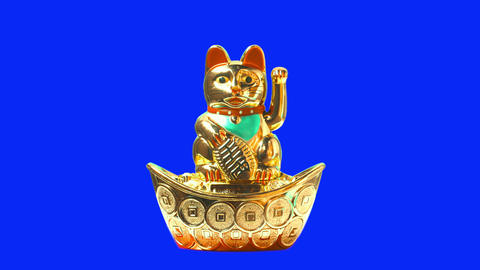 Lucky cat or maneki neko with money symbol for chinese culture. Good fortune for lunar new year Live Action