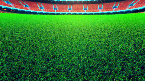 Flying On Grass In Green Stadium Animation