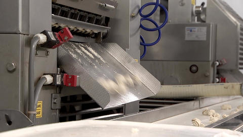 Installation for the production of ravioli, food industry Footage