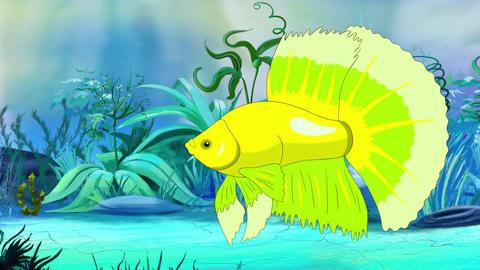 Big Green Aquarium cockerel fish in a tank Animation