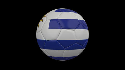 Soccer Ball with flags of the participating countries America Cup in Brazil 2019 Animation