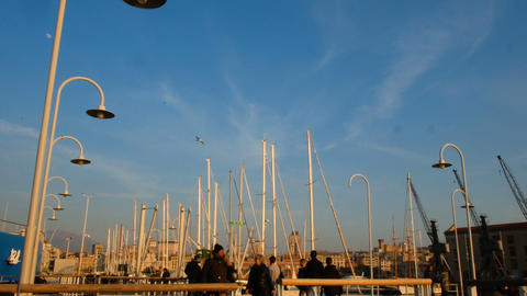 sailboats on the harbor anchored, sunset at the port of Genoa Footage