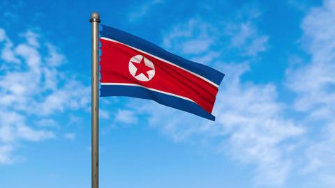 North Korea flag waving animation with alpha Animation