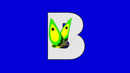 Letter B and Butterfly (foreground) Footage