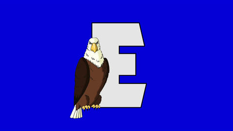 Letter E And Eagle (foreground) stock footage