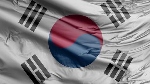 South Korea Flag Real Animation Loop Animation
