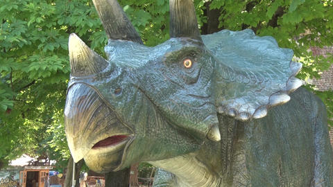 Realistic head of tricheraptus dinosaur in dino park Footage