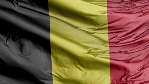 Belgium Flag Real Animation Loop GIF