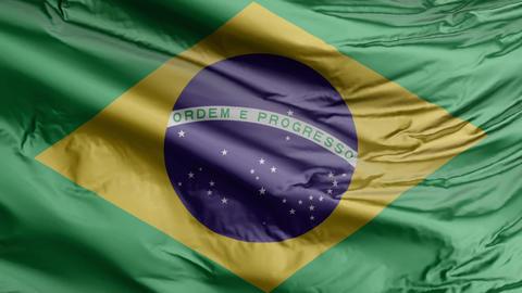 Brazil Flag Real Animation Loop GIF