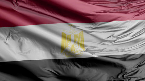 Egypt Flag Real Animation Loop Animation