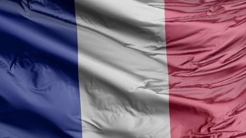 France Flag Real Animation Loop Animation