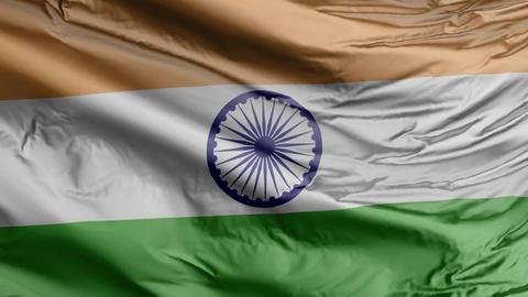 India Flag Real Animation Loop Animation