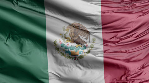 Mexico Flag Real Animation Loop Animation