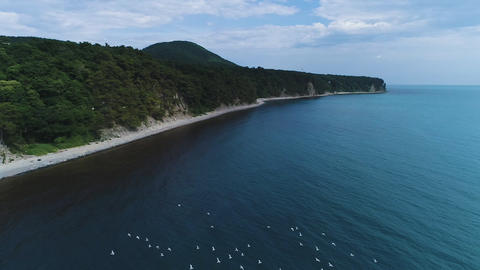 Sea coast of the black sea from a bird's flight Footage