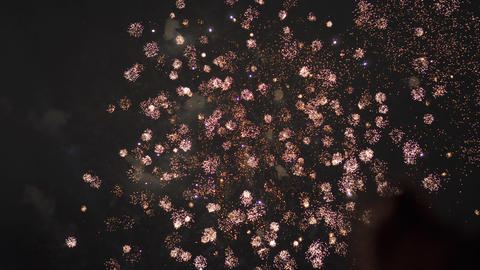 Fireworks in the sky. Celebration of the 4th July. Independence Day. 2 Footage