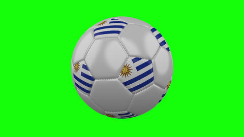 Soccer ball with Uruguay flag on green chroma key background, loop Animation