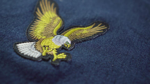 Eagle symbol on top of jeans. After stitch. symbol of america Live Action