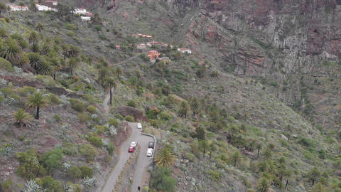 Aerial. Valley in the mountains of volcanic origin, palm trees and stones in the Footage