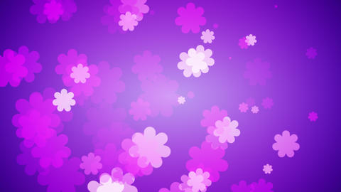 Flowers Spreading Out On Gradient Background. Spring Concept Animation