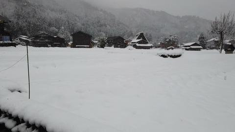 Snow falling in Shirakawago village world heritage, Japan Footage