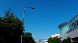 Traveling the Odaiba tourist destination/お台場海浜公園通り ビデオ