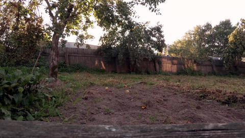 A static shot shows the earth and fence Footage