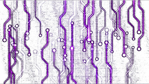 Abstract Technology Circuit Background - Loop Purple Animation