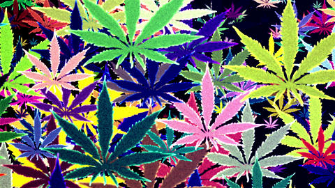 Marijuana Colored Random Loop Background Animation