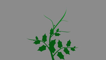 Christmas Holly Branch - 2