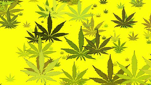 Green Marijuana On Yellow Loop Background Animation