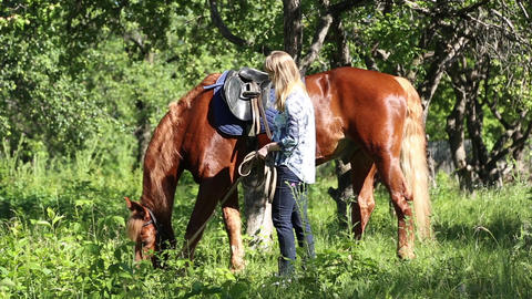 A girl stands next to the horse