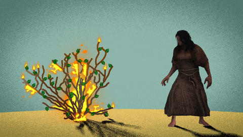 Moses Standing In Front of the Burning Bush in the Desert Footage