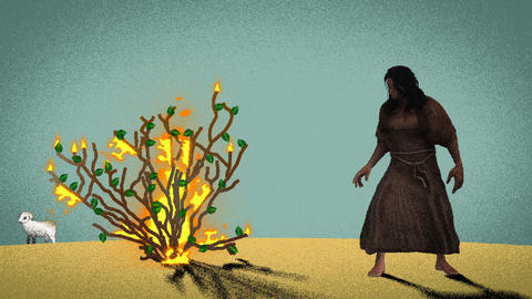 Moses Standing In Front of the Burning Bush in the Desert with Lamb at the Background Footage
