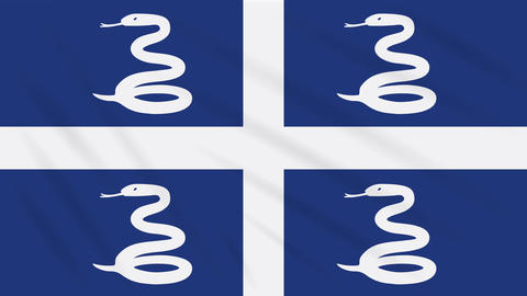 Martinique flag waving cloth, background loop Animation