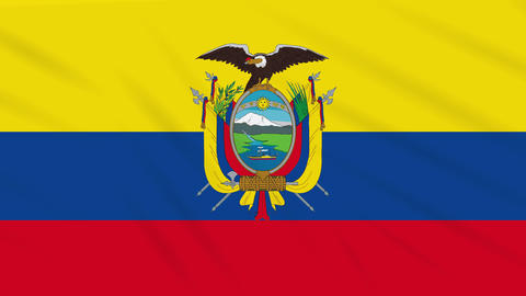 Ecuador flag waving cloth, background loop Animation