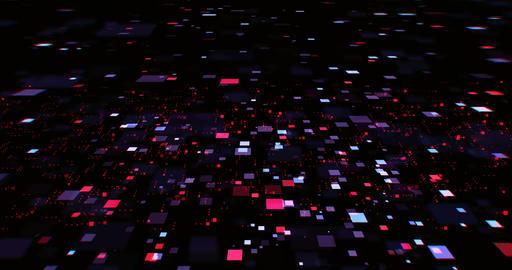 Cyber Background 실사 촬영