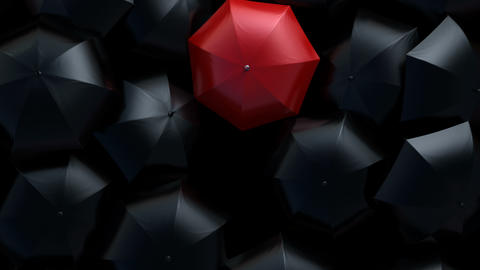 Red Umbrella Sneaks Through Flow of Black Umbrellas, Leader in the Crowd Concept Animation