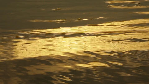 Golden water light Archivo