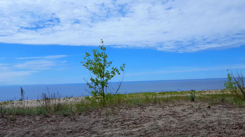 Camera Pan of Beautiful Beach Shore Sand and Water During Sunny Summer Day. Sand Shoreline With Footage