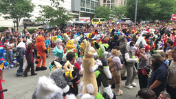 Furries Parade at their 2016 Anthrocon Convention in Pittsburgh Footage