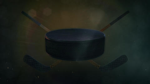 Hockey Puck Animation
