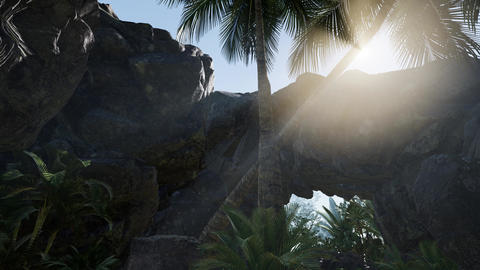 Sunbeam in cave with palms Live Action