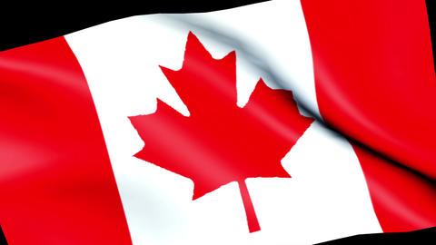 Canada flag wind CG symbol Animation