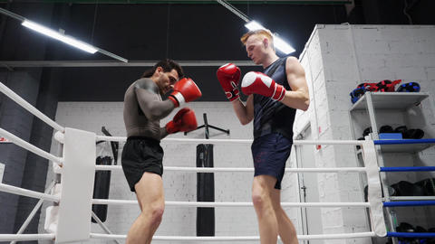 Two boxer man training kick by legs on boxing ring. Low angle view. Boxer man Footage