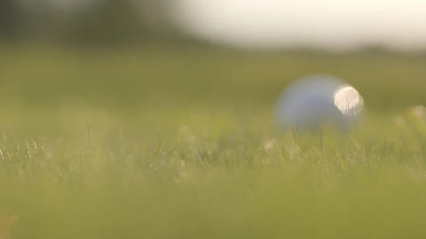 Close-up of golf ball rolling on the green grass. Male hand grabbing the ball Live Action
