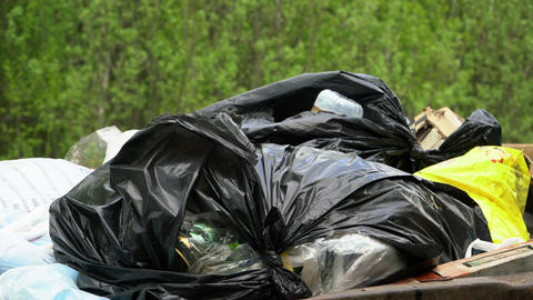 Black plastic bags of garbage are in the container Footage