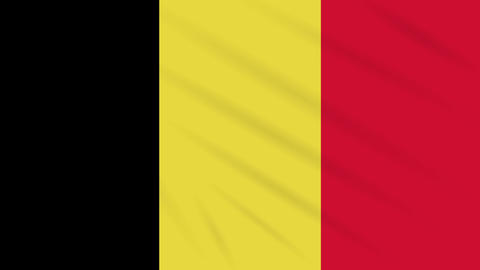 Belgium flag waving cloth background, loop Animation